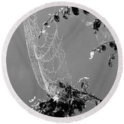 Web In The Rain B-w Round Beach Towel