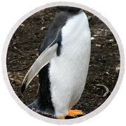 Welcome From A Gentoo Penguin Round Beach Towel