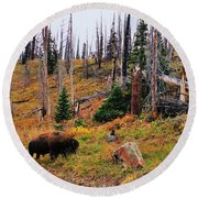 Western Icon Round Beach Towel by Benjamin Yeager