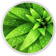 Wet Foliage Round Beach Towel