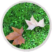 Wet Leaves On Grass Round Beach Towel