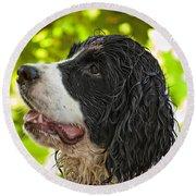 Wet Puppy 2 Round Beach Towel
