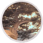 Whaler's Cabin Round Beach Towel by Jane Linders