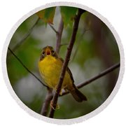 What Warblers Do Round Beach Towel