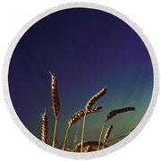 Wheat Field At Night Under The Moon Round Beach Towel