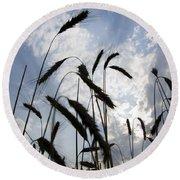 Wheat With Blue Sky Round Beach Towel