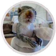 Whiskers Round Beach Towel