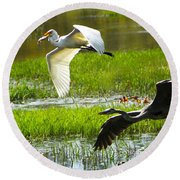White And Grey Herons In Flight Round Beach Towel