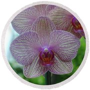 White And Pink Orchid Round Beach Towel