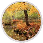 White Ash And Stream In Autumn Round Beach Towel