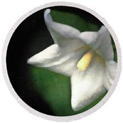 White Balloon Flower-faux Painting Round Beach Towel
