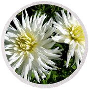 White Dahlias In Autumn  Round Beach Towel