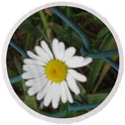 White Flower On The Fence Round Beach Towel