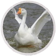 White Goose Round Beach Towel