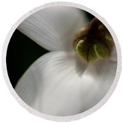 White Graceful Round Beach Towel