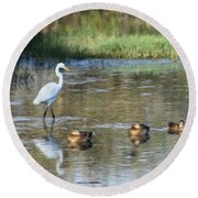 White Heron And Baby Ducks Round Beach Towel