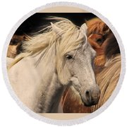 White Icelandic Horse Round Beach Towel