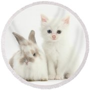 White Kitten And Baby Rabbit Round Beach Towel