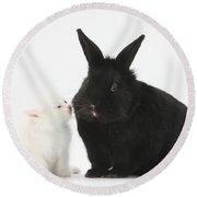White Kitten And Black Rabbit Round Beach Towel