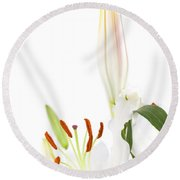 White Lillys And Background Round Beach Towel