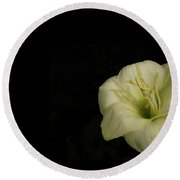 White Lily In The Dark Round Beach Towel