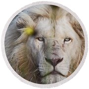 White Lion And Yellow Flowers Round Beach Towel