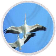 White Pelicans In Flight Round Beach Towel