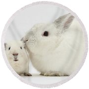 White Rabbit And White Guinea Pig Round Beach Towel