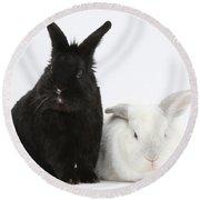 White Rabbit With Black Rabbit Round Beach Towel