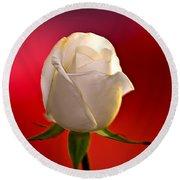 White Rose Red And Black Bg Round Beach Towel