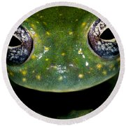 White Spotted Glass Frog Round Beach Towel