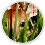 White Tailed Deer Fawn Hiding In Grass Round Beach Towel