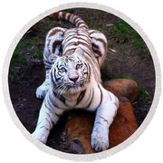 White Tiger 2 Round Beach Towel