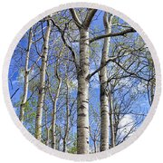 White Trees Against A Blue Sky Round Beach Towel