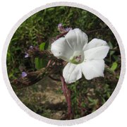 Small White Morning Glory Round Beach Towel