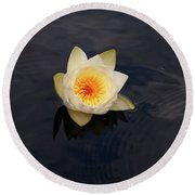 White Water-lily 2 Round Beach Towel