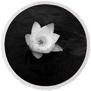 White Water-lily 3 Round Beach Towel