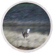 Whitetail Abstract Round Beach Towel