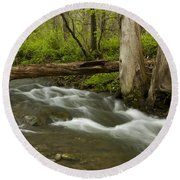 Whitewater River Spring 18 Round Beach Towel