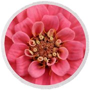 Whole Lotta Pink Round Beach Towel