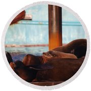 Whos Your Seal Round Beach Towel