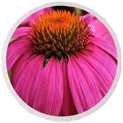 Wild Berry Purple Cone Flower Round Beach Towel