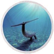 Wild Bottlenose Dolphin Round Beach Towel