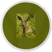 Wild Doe Round Beach Towel