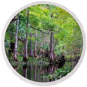 Wild Florida - Hillsborough River Round Beach Towel