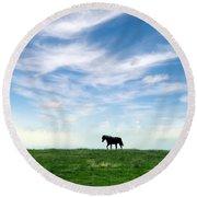 Wild Horse On Grassy Hill Round Beach Towel