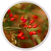 Wild Red Berry Reflections Round Beach Towel