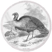Wild Turkey, 1853 Round Beach Towel