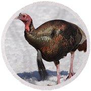 Wild Turkey In The Snow Round Beach Towel