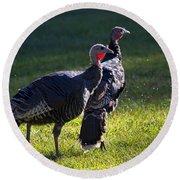 Wild Turkeys Round Beach Towel by Mike  Dawson